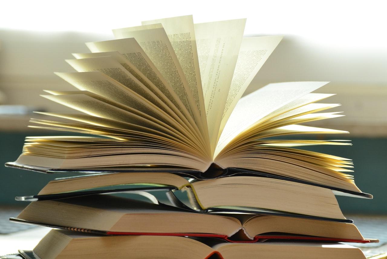 Welk boek over mediawijsheid lees jij deze zomer? 12 recensies op een rij